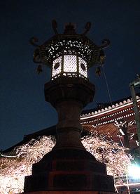 花まつり in 佛光寺 2010年4月9日